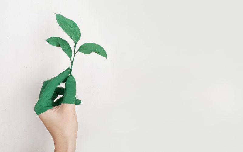duurzame inrichting tips en shoptips