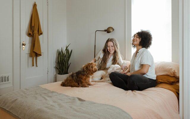Altijd een comfortabele temperatuur in huis - Sfeerencomfort.nl